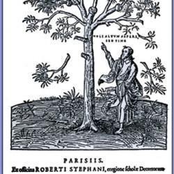 Robert Estienne, marque typographique (XVIe siècle)