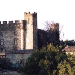 Château de Castelnau (30)