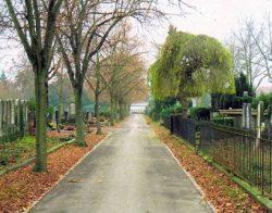 Cimetière protestant de Mulhouse : allée